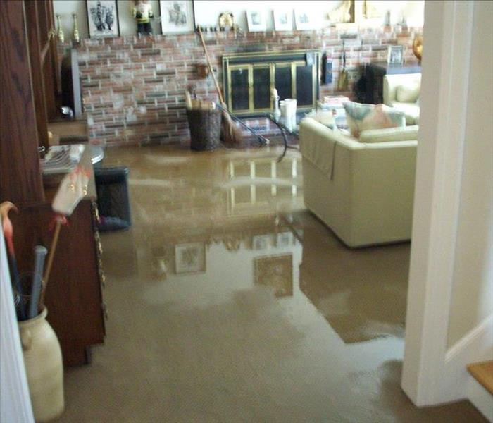 Water Damage Genesee County Residents: We Specialize in Flooded Basement Cleanup and Restoration!