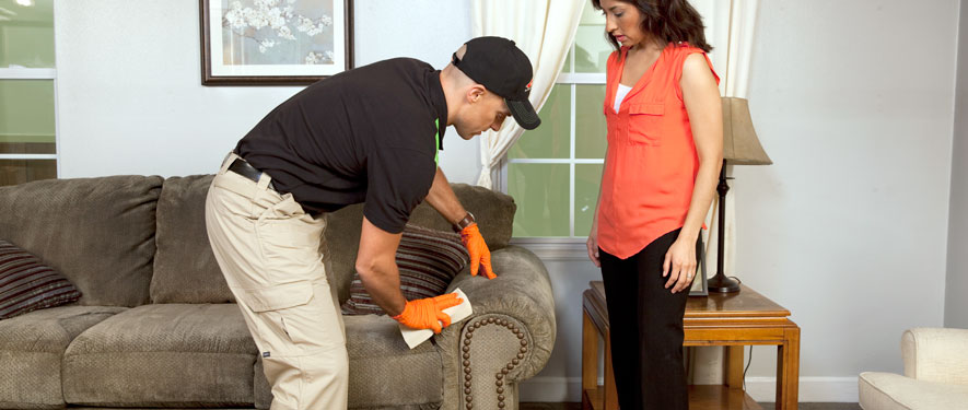 Flint, MI carpet upholstery cleaning