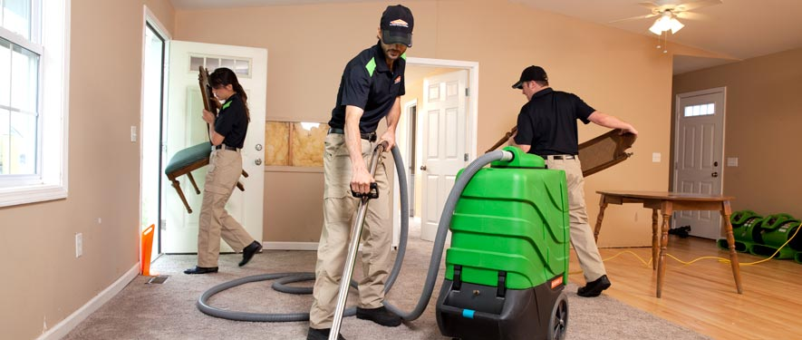 Flint, MI cleaning services